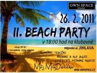 beach_2011